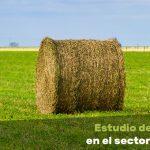 tendencias en el sector de la alfalfa